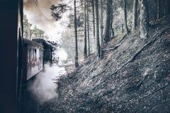 Paseo del tren del vapor Imágenes de archivo libres de regalías