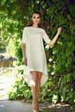 Paseo del vestido de la mujer que lleva atractiva hermosa en el brillo del sol del parque Imagen de archivo libre de regalías