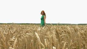 Paseo en el campo de trigo metrajes