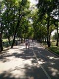 paseo en jardín Imagen de archivo