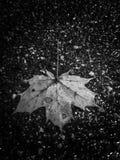 Paseo en la lluvia foto de archivo libre de regalías