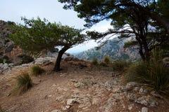 Paseo en Mallorca fotos de archivo libres de regalías