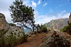 Paseo en Mallorca imagen de archivo