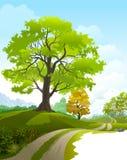 Paseo escénico alrededor del campo hermoso libre illustration