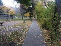 Paseo escénico de la caída en el parque fotos de archivo