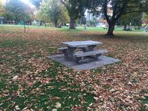 Paseo escénico de la caída en el parque imagen de archivo libre de regalías