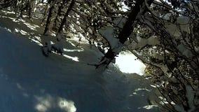 Paseo extremo loco en snowboard a través del bosque nevoso grueso, precipitación de la adrenalina almacen de video