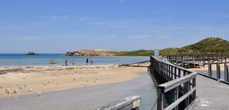Paseo marítimo de la isla del pingüino: Rockingham, Australia occidental Fotos de archivo libres de regalías