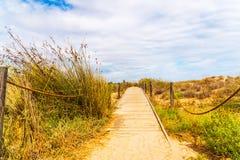 Paseo marítimo de madera en las dunas que llevan a la playa arenosa, el PA Imagenes de archivo