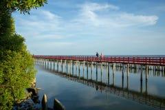Paseo marítimo de madera rojo a través del bosque fotografía de archivo libre de regalías