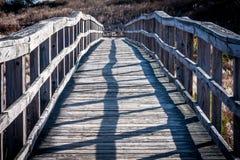 Paseo marítimo deformado, de madera en luz del sol Imagenes de archivo