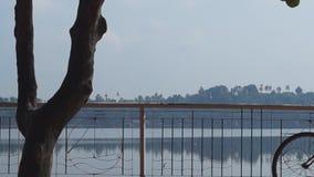Paseo marítimo del lago de la bici de la señora y del hombre junto siluetas almacen de metraje de vídeo