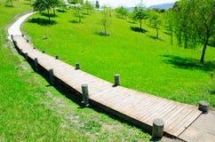 Paseo marítimo estrecho de la madera en un campo verde en la colina fotografía de archivo