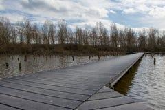 Paseo marítimo sobre el bosque ahogado en Schalkwijk Imagen de archivo libre de regalías