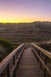 Paseo marítimo a través de las dunas en el amanecer Imagen de archivo libre de regalías