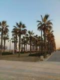 Paseo marítimo. Valencia, playa Malvarrosa Stock Photography