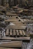 Paseo marítimo viejo en el pantano imágenes de archivo libres de regalías