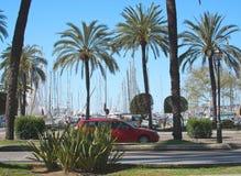 Paseo Maritimo traffic palms and marina Stock Images