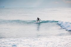 Paseo profesional de la persona que practica surf en onda azul Invierno que practica surf en el océano fotografía de archivo libre de regalías