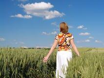 Paseo romántico en maíz del trigo Imagenes de archivo