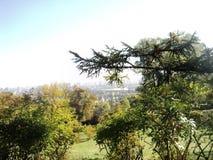 paseo a través del jardín botánico en la ciudad de Kiev por la tarde del otoño fotografía de archivo