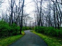 Paseo a través del parque Imagen de archivo libre de regalías