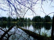 Paseo a través del parque Imagenes de archivo