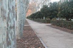 Paseo a través del parque con dos personas en la distancia imagen de archivo