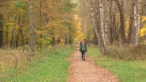 Paseo a través del parque del otoño almacen de metraje de vídeo