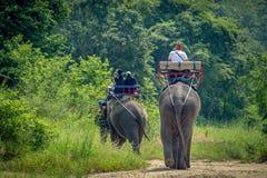 Paseo turístico el senderismo del elefante de la aventura a través de la selva imagen de archivo