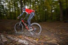 Paseos de Mountainbiker a través de la corriente del bosque foto de archivo libre de regalías
