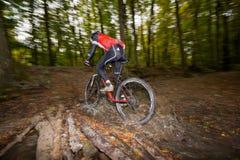 Paseos de Mountainbiker a través de la corriente del bosque foto de archivo