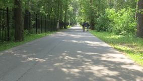 Paseos del ciclo a lo largo del carril de la bici del asfalto más allá de la cerca y del bosque almacen de metraje de vídeo