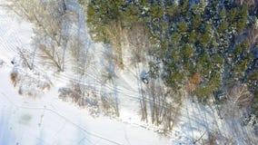 Paseos del coche a lo largo del bosque nevoso almacen de video