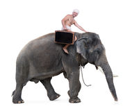 Paseos del Mahout en un elefante Imagen de archivo libre de regalías