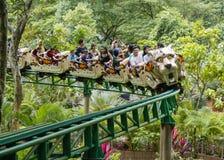 Paseos del roller coaster Imagen de archivo libre de regalías