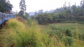 Paseos del tren cerca del pueblo de Oya del talón almacen de video