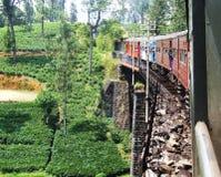 Paseos del tren sobre el puente en Sri Lanka Foto de archivo