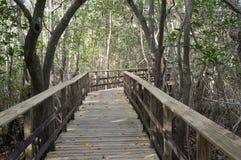 Paseos marítimos de madera de la Florida del sur Fotos de archivo libres de regalías
