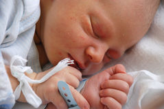 Pasgeboren Stock Afbeelding