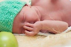 Pasgeboren appel Stock Foto's