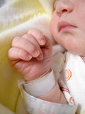 Pasgeboren baby royalty-vrije stock afbeeldingen