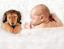 Pasgeboren baby royalty-vrije stock fotografie