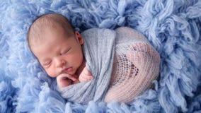 Pasgeboren baby die in blauw die bont liggen in luier wordt verpakt stock videobeelden