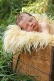 Pasgeboren baby in een doos royalty-vrije stock afbeeldingen