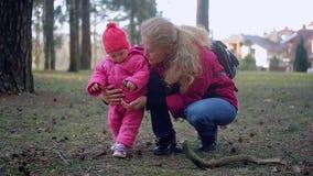 Pasgeboren baby en familie die in het Park lopen stock video