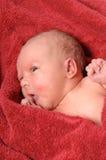 Pasgeboren baby na bad Stock Afbeelding