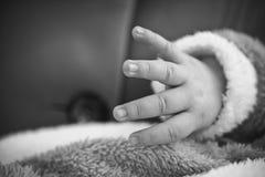 Pasgeboren babyhand Stock Afbeeldingen