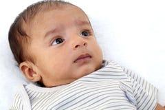 Pasgeboren babyjongen stock fotografie