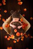 Pasgeboren babyjongen Royalty-vrije Stock Foto